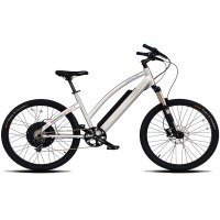 ProdecoTech Genesis V5 Electric Bicycle – Silver/Black